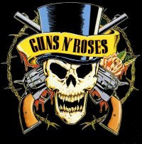 GUNS 'N ROSES IS BACK TO LIFE... BACK TO REALITY  !