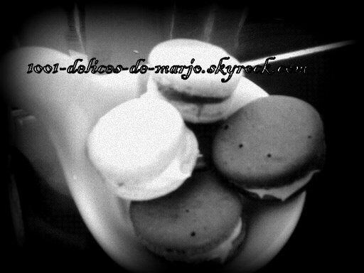 macaron <3