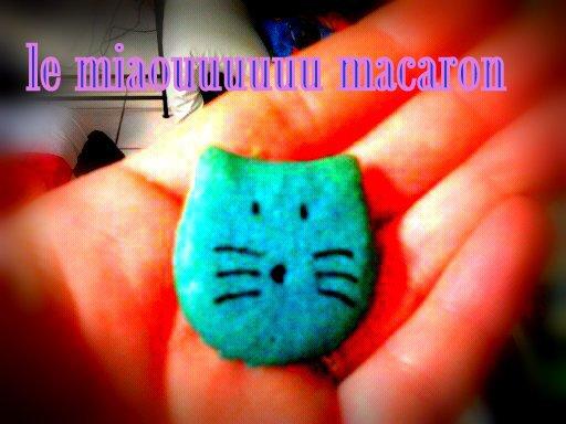 miaouuuu macaron