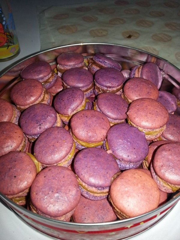 macarons multi gout