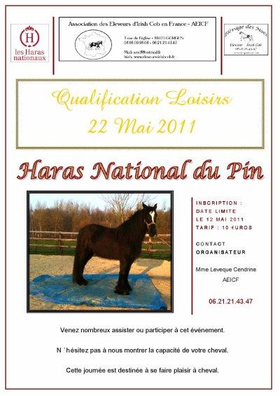 QUALIFICATION LOISIR 22 MAI 2011 - HARAS DU PIN