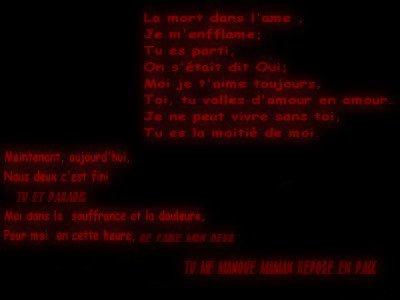 BLOG EN PAUSE    BRUNE-608 (  'EN PERIODE DE DEUIL)