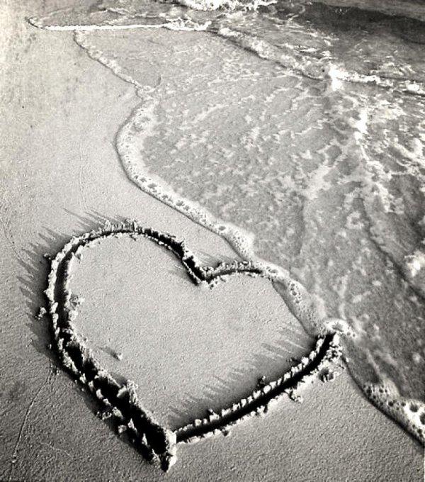 Quand la lâcheté est une forme d'amour ...