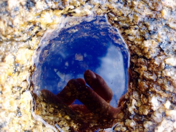 Eyeem.com/Lauren33