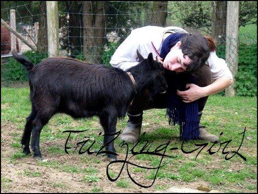 Ma chèvre naine