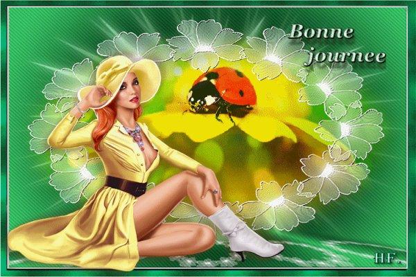 TRES  BONNE   SOIREE    MES  AMIS   (E)