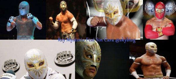 BIENVENU DANS L'UNIVERS DE LA WWE SIN CARA