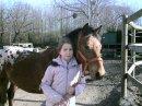 Photo de passion-poney-50