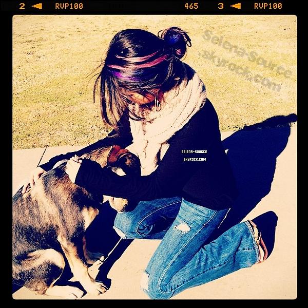 ..  Photos personelles de S. avec Justin, Ashley Benson et ses amis lors de son voyage au Mexique ;)  ..        ..  + Découvrez les nouvelles mèches bleues & violettes de Sel, sur ces photos .. Qu'en pensez-vous ?  ..