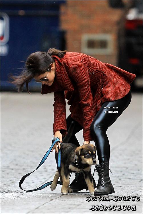 ..  1er novembre : Notre ravissante Selly s'est rendue à l'évènement  « The Fulfillment Gala »  ;)   ..        ..  25 octobre : Selena a un nouveau chien ! Il s'appelle Baylor : n'est-il pas adorable ? Vos avis ?  ..