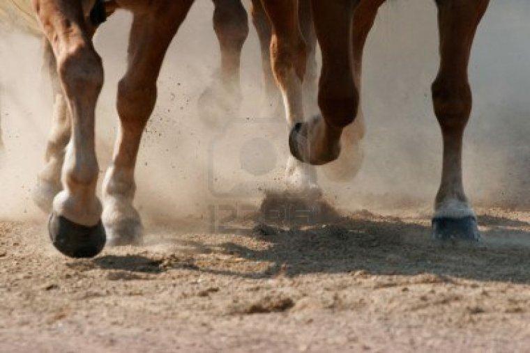 Pas de pied pas de cheval!(Partie 2)
