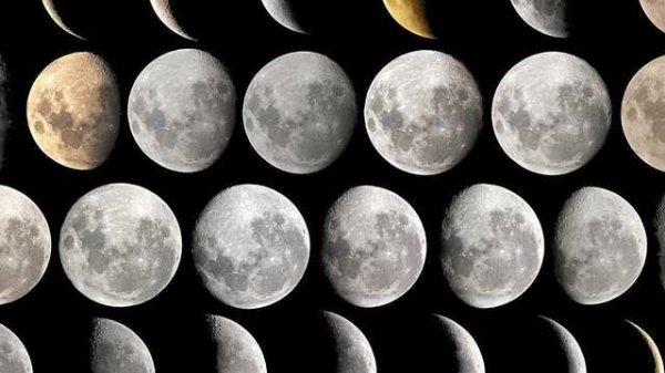 je me croyais pourtant capable de tout pour elle, d'effriter des copeaux de lune pour pailleter ses paupieres.