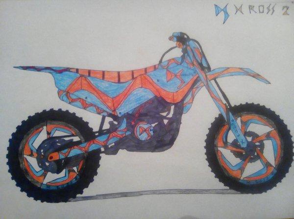 DS X Ross 2