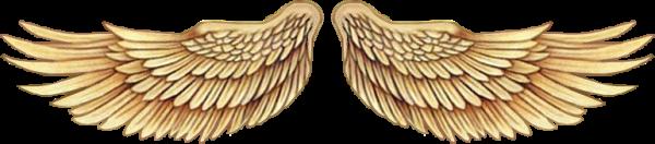 Chapitre 11 : La ville des anges ? La ville des dépravés oui ! -Selena