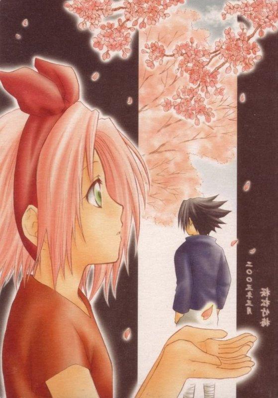 Doujin SasuSaku : Awai Hana [suite 3]