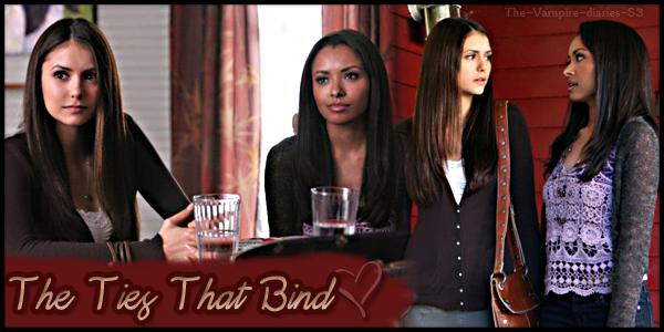 """""""The Ties That Bind"""" épisode 12 Saison 3"""