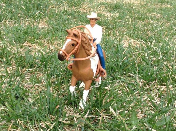 Promenade avec Rubie monté par cow-boy