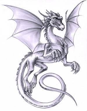 Dessin Dragon Salut Tout Le Monde Visitez Le Site Des