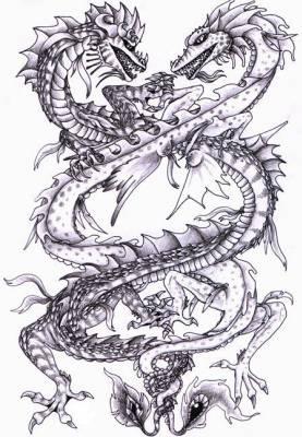 Dragon blanc vs dragon noir salut tout le monde - Dessins dragons chinois ...