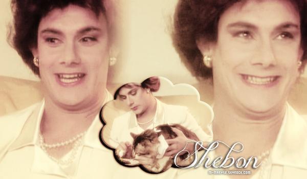 les inconnus - shebon