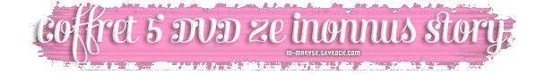 M - M A R Y S E . S K Y R O C K . C O M  ZE Inconnus Story <3