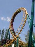 Photo de Coaster-6o