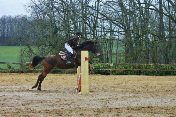 Le cheval est la plus noble conquête que l'homme ait jamais faite ♥.