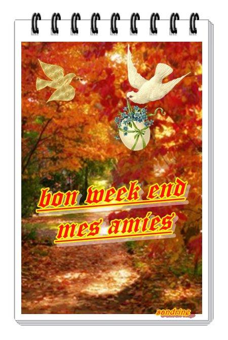 hello mes amies  je viens vous souhaitez un doux week end avec le temps qui y convient le vrai automne mille doux bisous