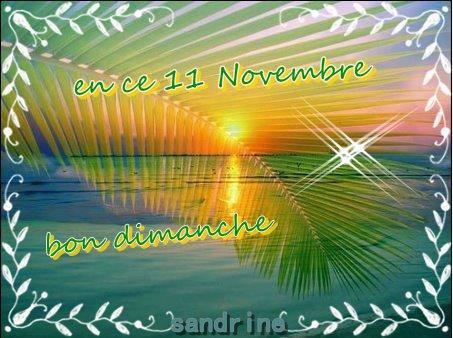je viens vous souhaitez un bon 11 novembre et vous souhaite une douce soirée