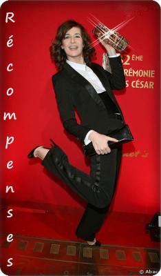 Les récompenses de Valérie Lemercier