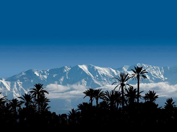 Vue panoramique : grand atlas de marrakech +palmeraie*