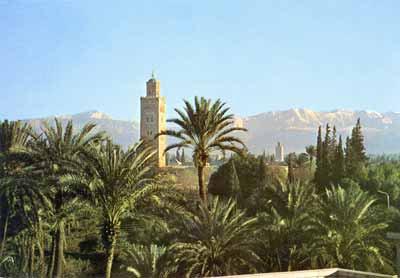 La palmeraie de marrakech + Grand atlas + koutoubia