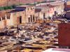 La tannerie à marrakech(Dar debagh) : 1travail dur et fatiguant , dans des conditions non sanitaires .