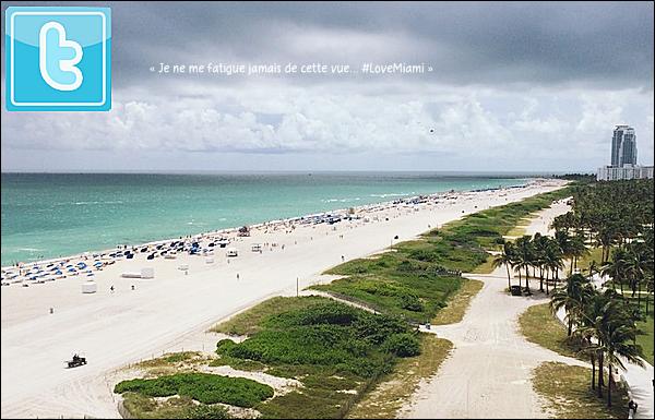 • 14 Septembre 2o14 •  - Miami, Etats-Unis. 👙 Eva & Pepe ont été vus à la piscine de l'hôtel « Il Villaggio ».