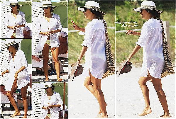 • o8 Novembre 2o14 •  - Miami, Etats-Unis. 🌴 Eva a été vue sur une plage de « L'Hôtel Il Villaggio ».