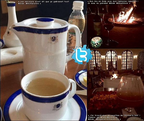 • 15 - 24 Décembre 2o15 •  - Delhi, Agra, Jaipur, Mumbaï - Inde. 📷 Eva a posté des photos de « L'Harmony House » à Delhi, le « Taj Mahal » à Agra & la « Réserve de tigres » Ranthambhore. Tenue: Manteau Canada Goose à 465¤ & Pantalon Parker à 185¤.