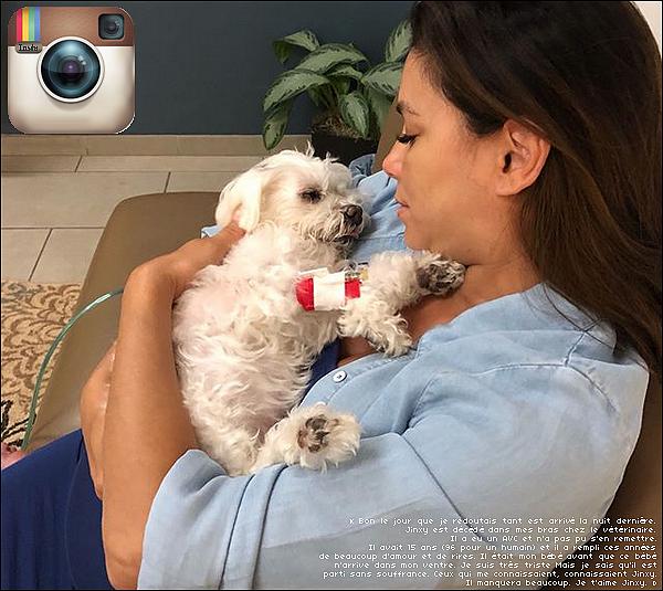 • 17 Juin 2o18 •  - Los Angeles, Etats-Unis. 📷 Eva a posté une « Photo d'Elle & ses amis ».