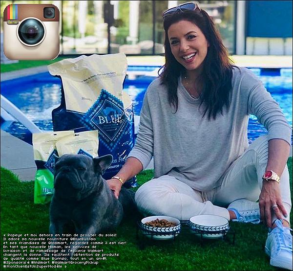 • 3o Avril 2o19 •  - Los Angeles, Etats-Unis. 📷 Eva a posté une « Photo d'Elle & Popeye ». C'est l'occasion pour Eva de montrer sa sponsorisation de la marque Blue Buffalo distribuée par le magasin Walmart.