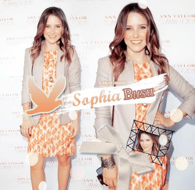 »Sophia Bush   →  création__Décoration__