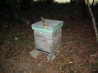 un nouveau rucher