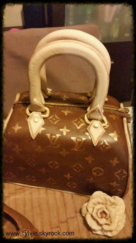 Mon gâteau Sac Louis Vuitton
