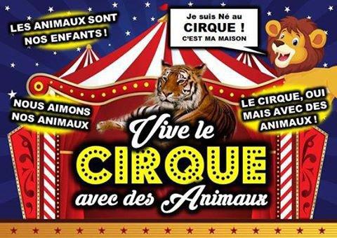 Hors série 1 : les antis cirque