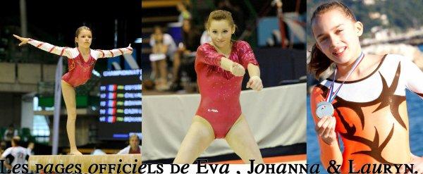 Quelques page de soutient officiel à ces jeunes gymnastes....