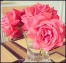 Photo de Sakura-Romance
