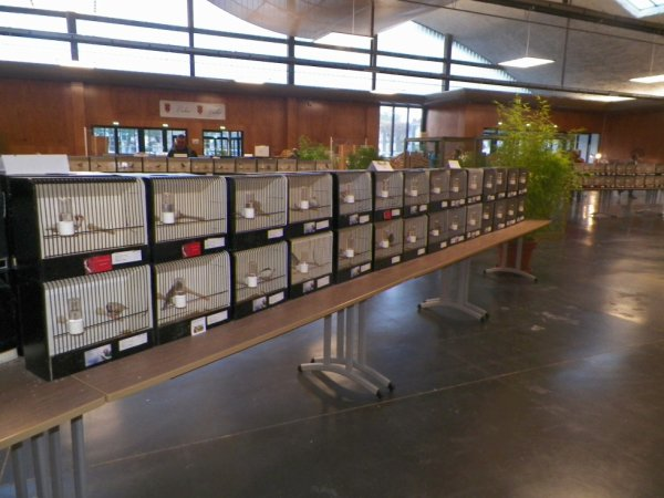 expo  calais 2012