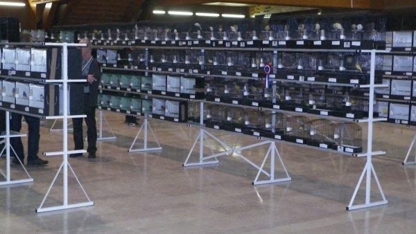 CAPPELLE LA GRANDE  REGIONAL FFO 2014