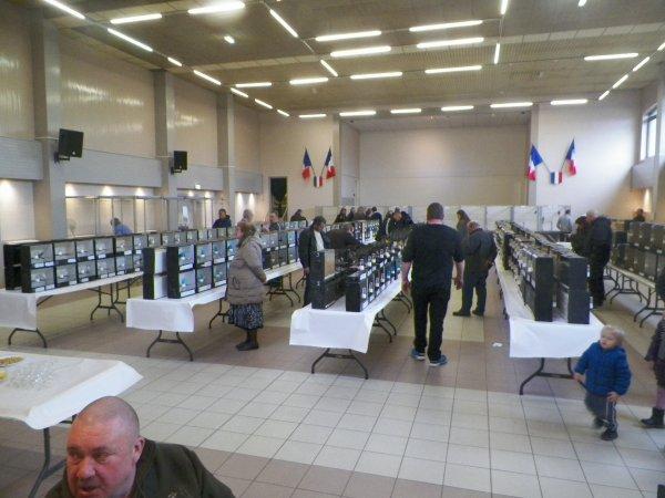 expo noeux les mines janvier 2016