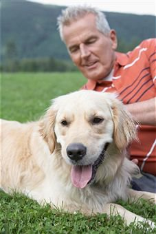 Health Problems in Older Dogs