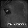 xReve-Capricieux