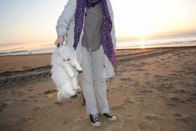 A la plage 7/11/2010